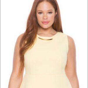 Stunning ELOQUII Plus Size Dress